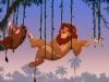 Crescendo com Timão e Pumba